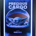 Star Wars: The Mandalorian (Precious Cargo)